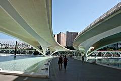 Paseando bajo el puente de Monteolivete - València (Kiko Colomer) Tags: francisco jose colomer pache kiko valencia valence ciudad artes ciencias puente monteolivete lago umbracle rio turia jardin