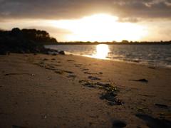 Footprint (An Arzhig) Tags: footprint sunset water sand panasonic lumix gx800 finistère bretagne france