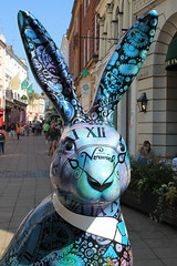 IMG_4750 (.Martin.) Tags: gogohares 2018 norwich city sculpture sculptures trail gogo go hares art norfolk childrens charity break