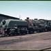 2.1966 Peterborough - South Australia locos SAR Garratt 401 in roundhouse area (mb-s003-22)