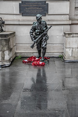 Liverpool (Maisiebeth) Tags: remembrance liverpool war soldier memorial reflection poppies fighting statue street