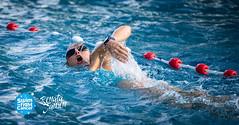 RJ8-8-STFC-89347 (HaarlemSwimtoFightCancer) Tags: joostreinse actie clinicreigers houtvaart sport sro swimtofightcancer training zwemmen