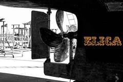 elica (enricoerriko) Tags: portocivitanova porto mare calafati citanò marineria barche pescherecci gru blackwhite beijing nyc civitanovamarche legno stoppa mazzola marmotta punta quadrata elica scafo quercia italia italie italy calafato calafatare impermeabilizzare tecnica maestria calafatura marche sea fasciame canapa mastrocalafato malabestia tavole spazio interstizio pece