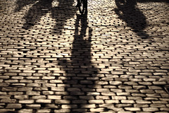 Bike gang (Elios.k) Tags: horizontal outdoors people shadows silhouette bicycle bike cycling bicyclist peopleonbicycles fiets longshadows backlight sunset sunlight street road cobblestone wheel stone dof depthoffield focusinbackground foregroundblur colour color travel travelling november2017 canon 5dmkii photography ghent gent belgium belgique flanders flemishregion europe