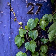 twenty seven (jemazzia) Tags: extérieur exterior fuori fuera auberhalb fora buiten couleurs colors cores kleuren farben coloi colores veintisiete vinteesete zevenentwintig vingtsept ventisette siebenundzwanzig