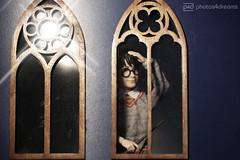 look who's arrived at hogwarts (photos4dreams) Tags: harrypotter mattel photos4dreams p4d photos4dreamz doll puppe barbie hogwarts joannekrowling saga bücher buch book books zauber zauberer magic magisch 16 figures figuren danielradcliffe