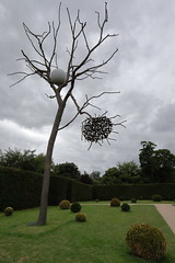 IS7DII_67416 (Ian Slingsby) Tags: yorkshiresculpturepark ysp giuseppepenone luceeombra