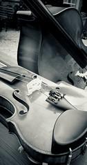 wood & strings (marcel.perik) Tags: doublebass violin strings bw
