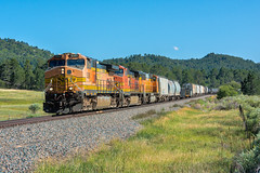 RR-20180731-JointLine-215-e (skyviewtim) Tags: bnsf5391 coloradorailroads coloradotrains merchandise castlerock colorado unitedstates us