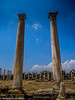 The Ancient Ruins of Salamis (mehmetkucukalkan) Tags: cyprus northcyprus mediterranian island photography ignicosia kyrenia famagusta travel traveller mirrorless