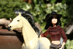 the cowgirl (photos4dreams) Tags: photos4dreams p4d photos4dreamz barbie doll lea asian dress mattel toy barbies girl play fashion fashionistas outfit kleider mode photoshoot outdoor equestrianwear leisure horse pferd dapplegrey apfelschimmel mcleodsdaughters reiterin andalusier andalusianhorse ooak
