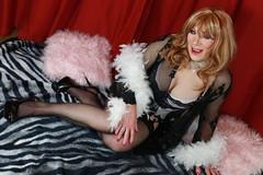 Temptress (rachel cole 121) Tags: tv transvestite transgendered tgirl crossdresser cd