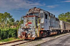 WRRX Locomotive 1030 (robtm2010) Tags: mountdora florida usa eastcoast canon canont3i t3i rr railroad trains locomotive engine wrrx no1030 waldensridgerailroad emd gp30 orlandonorthwesternrailway