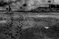20180905 After typhoon (soyokazeojisan) Tags: japan osaka bw street city water light people blackandwhite river monochrome digital olympus em1markⅱ 12100mm 2018