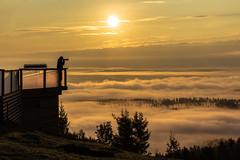 Sunrise shooting in Tahko on misty morning (VisitLakeland) Tags: finland kuopiotahko lakeland summer tahko cloud fog kesä luonto luontokohde maisema misty nature outdoor pilvi scenery sumu