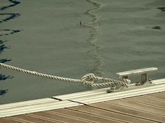 On the dock (degreve.sarah) Tags: docks rope attached see node water