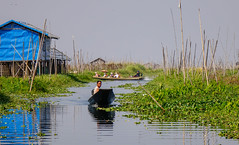 Wooden boat on Inle Lake, Myanmar (phuong.sg@gmail.com) Tags: adventure asia bank boat burmese calm culture custom destination editorial fisherman fishing floating folk freshwater highlights inle intha lake landscape leg lifestyle living mirror myanmar nature nyaungshwe outdoor paddle peaceful people reflection river rowing rural scenery shan sightseeing sit state tour tradition traditional tranquil travel trip tropical