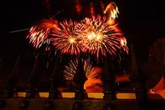Feuerwerk_Buergerfest-3 (tiegelzangenbob) Tags: fireworks feuerwerk firecrackers night bürgerfest hanau sonyalpha6000 samyang1220feuerwerkmainstadtfest