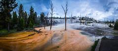 Mammoth, Yellowstone National Park (Darcey Prout) Tags: nikon d800 hdr panoramic mammoth hotspring yellowstone yellowstonenationalpark np nationalpark 1424 morning sulphur usa america