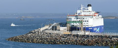 18 09 06 IF Oscar Wilde at berth Roscoff (3) (pghcork) Tags: irishferries oscarwilde roscoff bayofmorlaix ferry ferries carferry ships shipping ship brittany bretagne france 2018