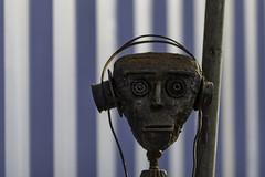¿Los robots escuchan rock metálico?   -    Do robots listen to heavy metal music? (Carlos J. M.) Tags: metal maschwitz buenosaires installation instalación haciendofoco arte art dslr canon 5dmk4