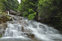 鳳大南坑 (tommy0620) Tags: landscape fall nature stream adventure hong kong lantau island