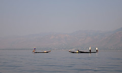 Catching fish on Inle Lake, Myanmar (phuong.sg@gmail.com) Tags: agriculture asia attraction balance beautiful boat burma catch countryside culture dusk fisherman fishermen fishing inlay inle intha kayak lake landscape life local man morning myanmar nature net outdoor paddle reflection ripple river row rowing rural shan silhouette skill stand state sunrise sunset technique tourism tradition traditional trap travel water