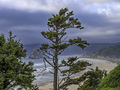Cannon Beach view from vista point along PCH (mutovkin) Tags: 2018 beach cannonbeach clouds g9 lumix lumixg9 ocean oregon pacificocean panasonic panasonicg9 rock tree trees usa
