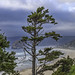 Cannon Beach view from vista point along PCH
