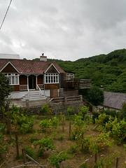 Llangrannog (Dubris) Tags: wales cymru ceredigion llangrannog seaside coast village house bungalow vineyard