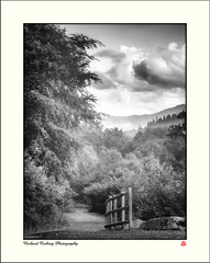 Photo of Parc Coedwig Coed-y-Brenin (Coed-y-Brenin Forest Park)