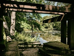 Pool (ancientlives) Tags: chicago illinois il usa lincolnpark alfredcaldwelllilypool lily pool pond shelter shade chicagoparks walking northpond nature wednesday 2018 september summer