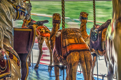 Passing By (by the passers-by) (Paul B0udreau) Tags: lakesideparkcarousel stcatharines nikkor50mm18 paulboudreauphotography ontario old niagara layer canada port dalhousie portdalhousie carousel movement motion