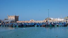 Essaouira harbour buildings (pan_orama) Tags: marokko maroc morocco essaouira beach harbour seagulls fish sun color travel