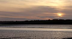 Bannow Bay Mudflats (Ken Meegan) Tags: bannowbaymudflats sunset bannowbay mudflats carrickonbannow cowexford ireland 1692018