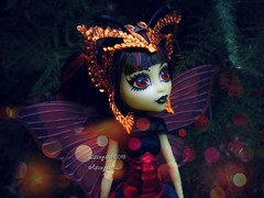 (Linayum) Tags: lunamothews mh monster monsterhigh mattel doll dolls muñeca muñecas toys toy juguetes linayum