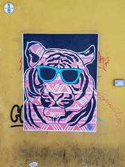 Bologna(278) (tullio dainese) Tags: 2018 bologna muri muro wall walls graffiti strada street streets strade allaperto outdoor