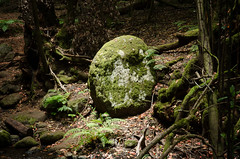 Mystery Stone (coastwalker) Tags: eden lagomera nationalpark nature stone fairy magical mystery coastwalker