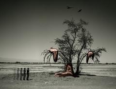 Persistence of Time (felipemorin) Tags: surreal surrealism surrealist desert d3400 nikon nikond3400 photomanipulation photoshop lightroom decay melting clocks persistence memory time dream dreamscape dreamer