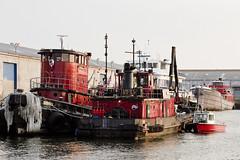 r_180816180_beat0069_a (Mitch Waxman) Tags: atlanticbasin eastrivershoreline newyorkcity newyorkharbor tugboat newyork
