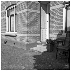 untitled (macfred64) Tags: film analog mediumformat 120 6x6 rolleiflex35f czplanar kodak400tx trix bw blackandwhite thenetherlands hollandsekroon hipolytushoef