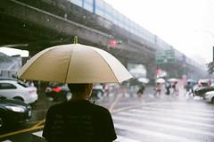 安靜無語地淋著雨,撐著傘。 (Old Soul Tai) Tags: minolta x700 mc wrokkorhh 35mm 118 fujicolor superia xtra 400 expired 112017