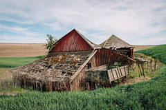 Buried By Time And Dust (Pedalhead'71) Tags: abandoned barn desert easternwashington landscape palouse prairie rural truck washington whitmancounty wheat