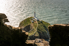 I Found Shelter (Rob Pitt) Tags: south stack southstack lighthouse cliffs cymru wales north holyhead photography sea outdoor ocean water rob pitt photogrphy coast beach shore cliff a7rii 2870