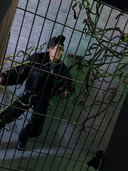 Officer Down 7/10 (MaxxieJames) Tags: catwoman selina kyle poison ivy pamela isley gcpd barbie doll dolls mattel batman gotham police action man diorama prison jail cell vines collector story