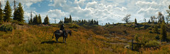 """""""Geralt in search for clues."""" (Xenolith3D) Tags: witcher3wildhunt thewither geralt geraltofrivia roach screenshot hd 4k pc panorama nvidiaansel nvidia virtualphotography nature novigrad cdprojektred redengine"""