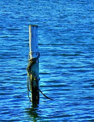 Are you adrift? (elphweb) Tags: hdr highdynamicrange nsw australia water river lake sea ocean pylon rope mooring