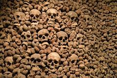 Skulls and bones (The Cuman) Tags: nikon nikond510 nikonafsnikkor2485mmf3545gedvr werner brno brünn skull bones cemetery