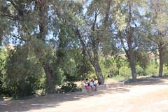 (Phil Mercer-Kelly) Tags: archaeology philmercer aion ancient archeologicalpark castle cyprus dig dionysos katopafos lighthouse mercerkelly mosaics orpheus paphos roman ruin theseus