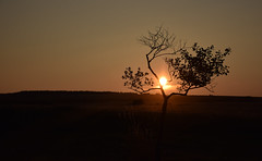 El atardecer entre los brazos/ The sunset between the arms (PURIFM) Tags: sunset light nature naturaleza